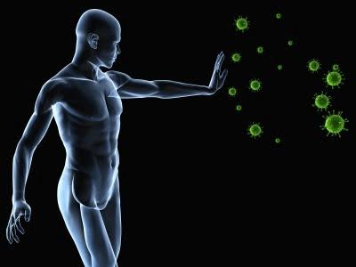 порно иммунитет