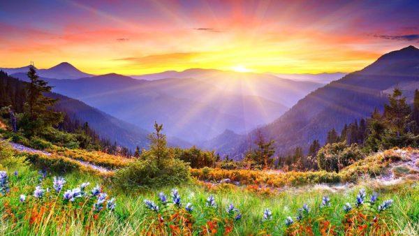 прекрасный мир созданный богом