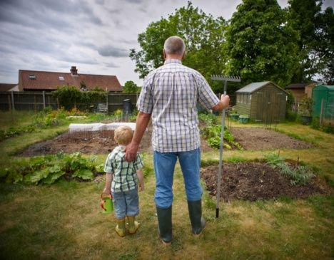 Построить дом посадить дерево и вырастить сына